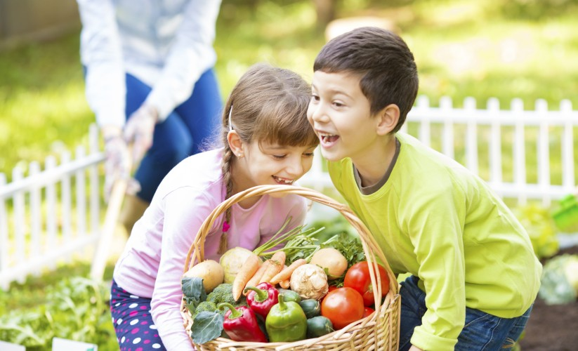 Are Your Food Choices Slowing Down Your Child?