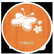 stressiz